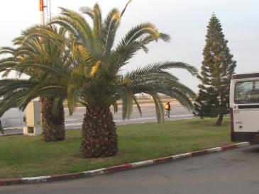 Habib luchthaven